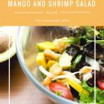 Mango and Shrimp Salad