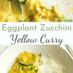 zucchini and eggplant curry